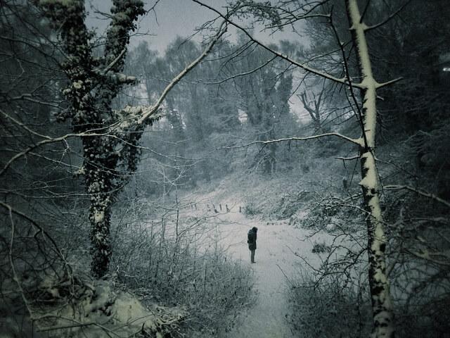 winter-walks-london