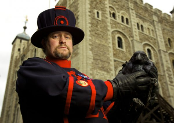 ravenmaster-tower-of-london-weird-jobs-ravens