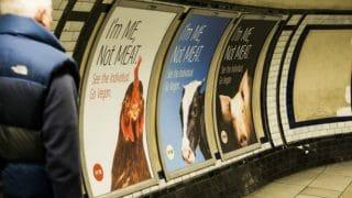 vegan-posters-clapham-common