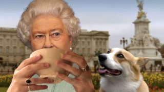 tea-with-queen-corgi-buckingham-palace