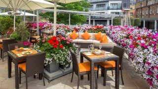 floral-terrace-london-gin-cocktails
