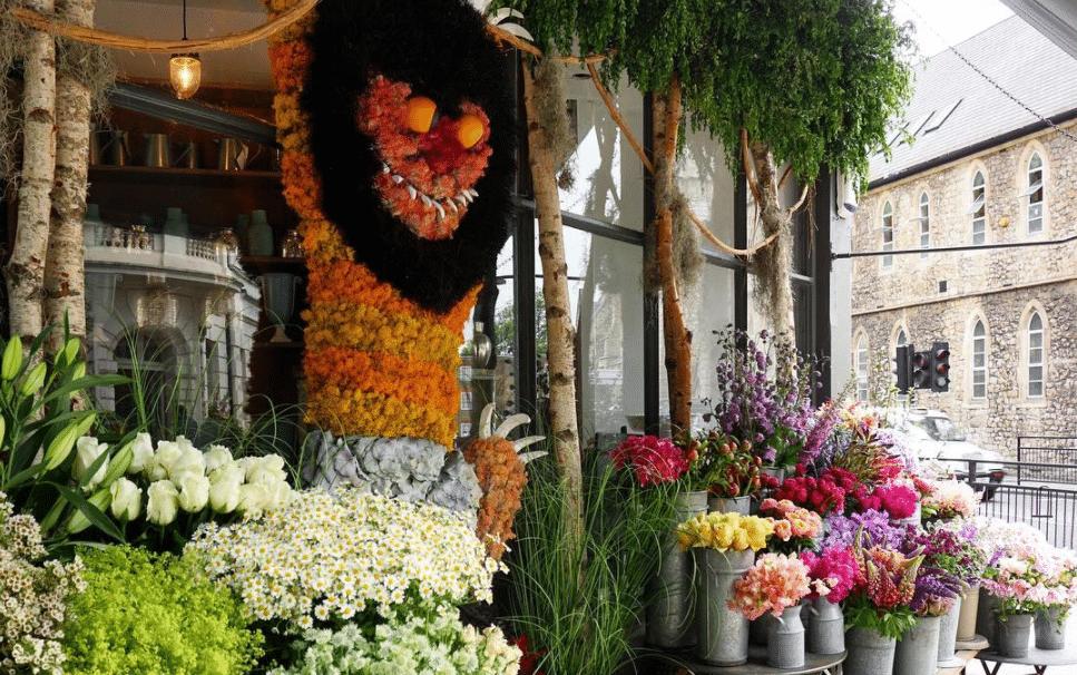 Belgravia in Bloom