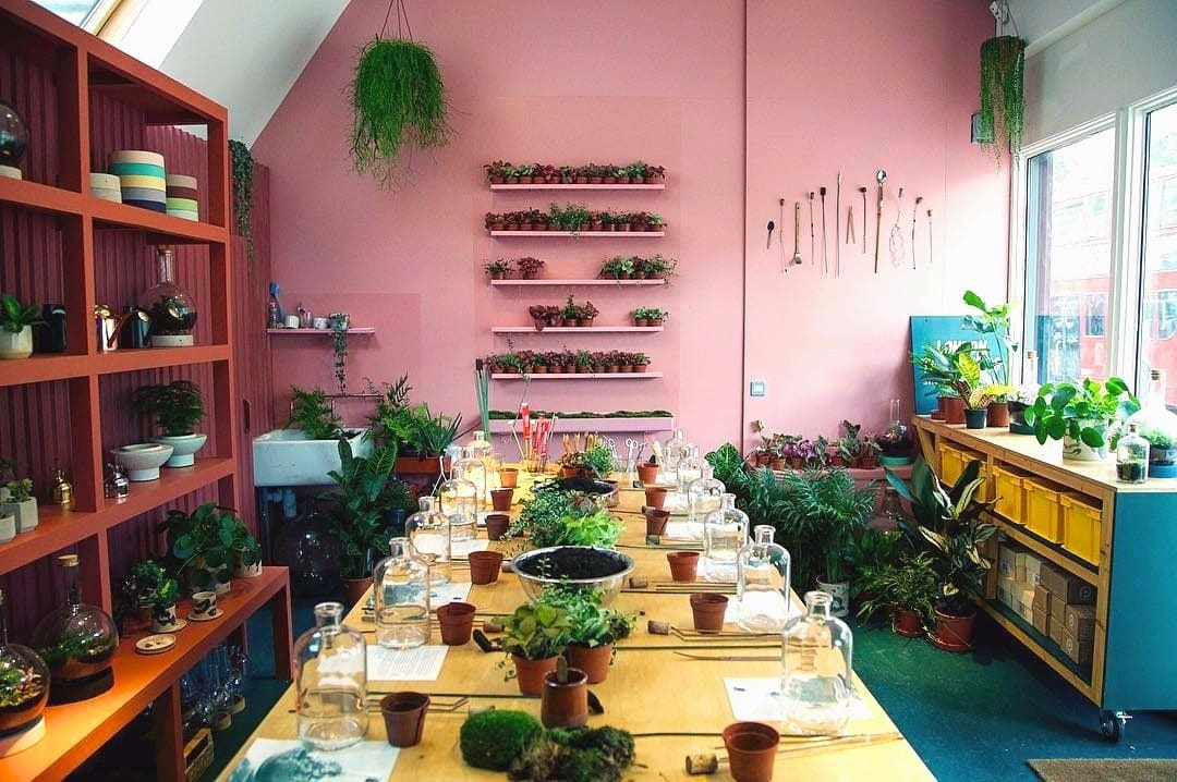 London S First Terrarium Shop Is As Picture Worthy As You D Expect