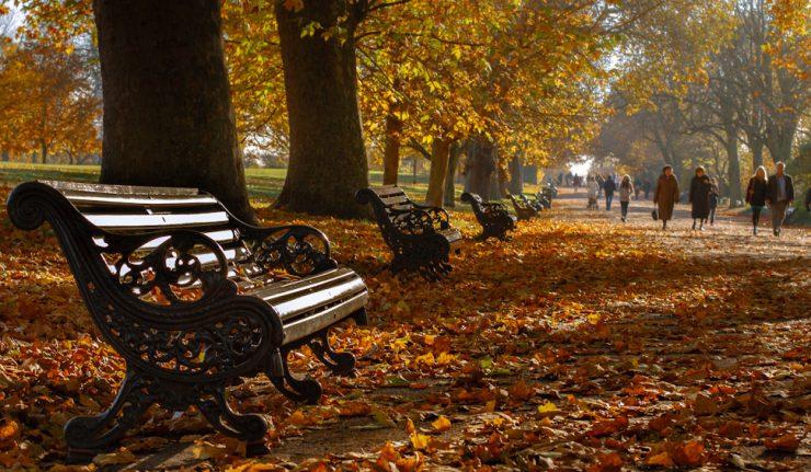 London October Autumn