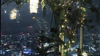 shard-tanqueray-treehouse
