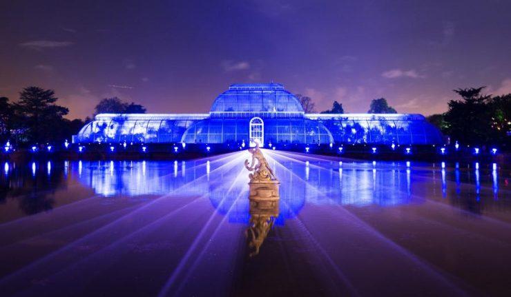 Kew gardens christmas 2019 gifts