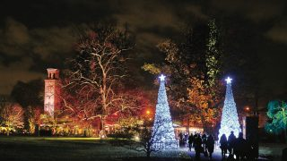 Kew Gardens Christmas light trail