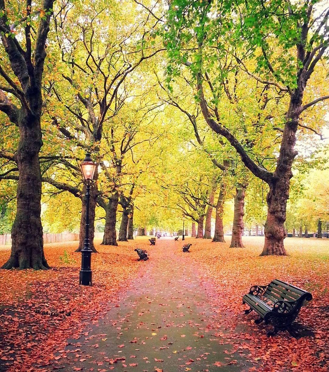 London autumn green park your_london_adventure