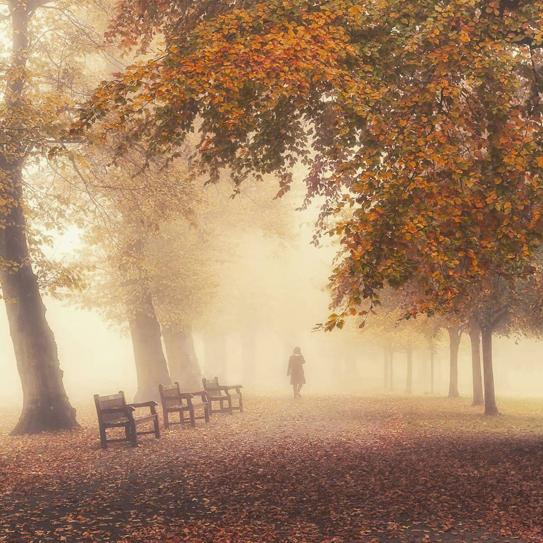 Waterlow Park in the autumn.