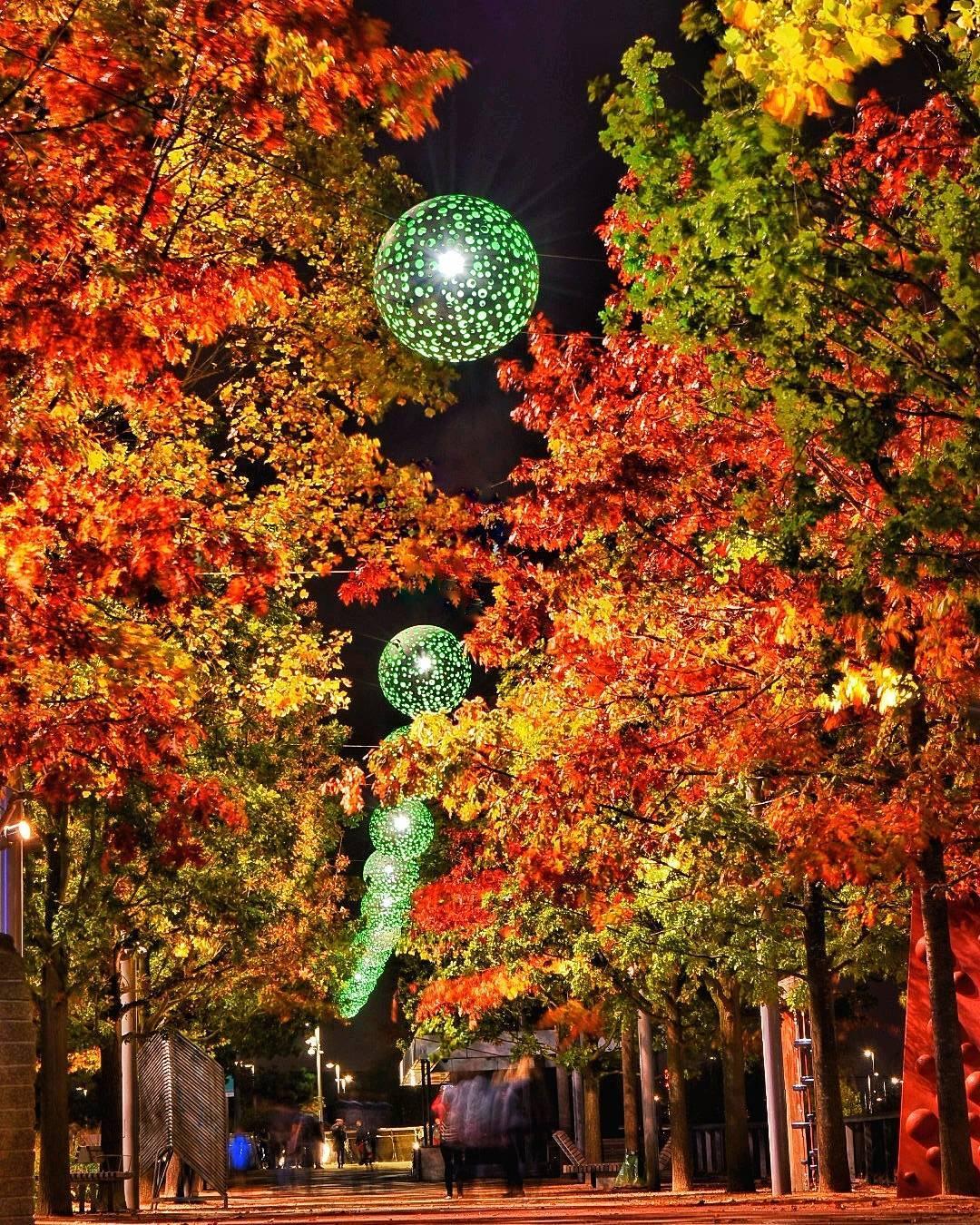 Stratford London in the autumn david248c