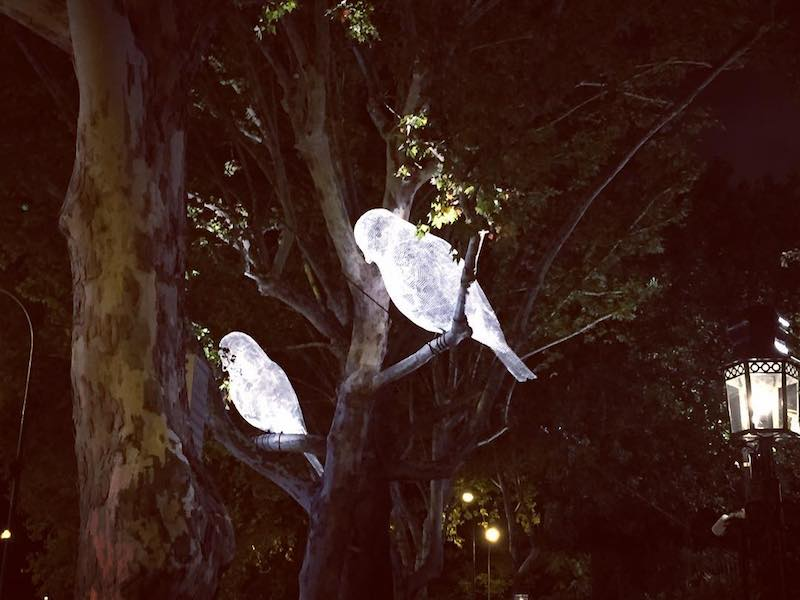 Lumiere London, Was It A Dream