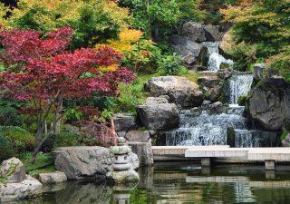 kyoto-garden