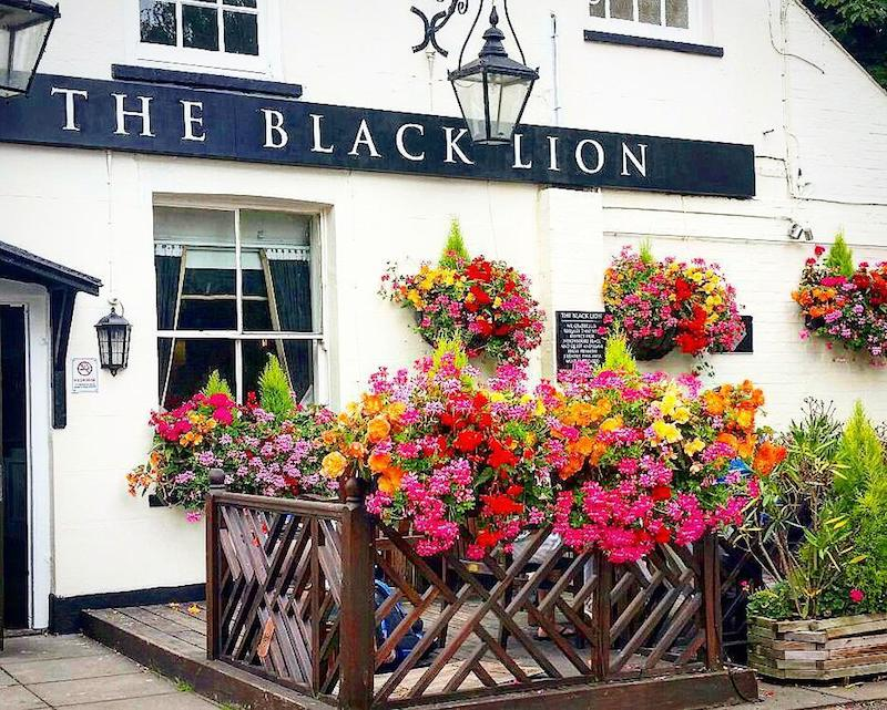 Black Lion Thames London