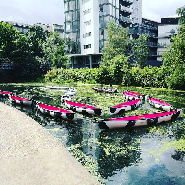 Moo Canoes: Take To The River With These Funky Bovine Boats
