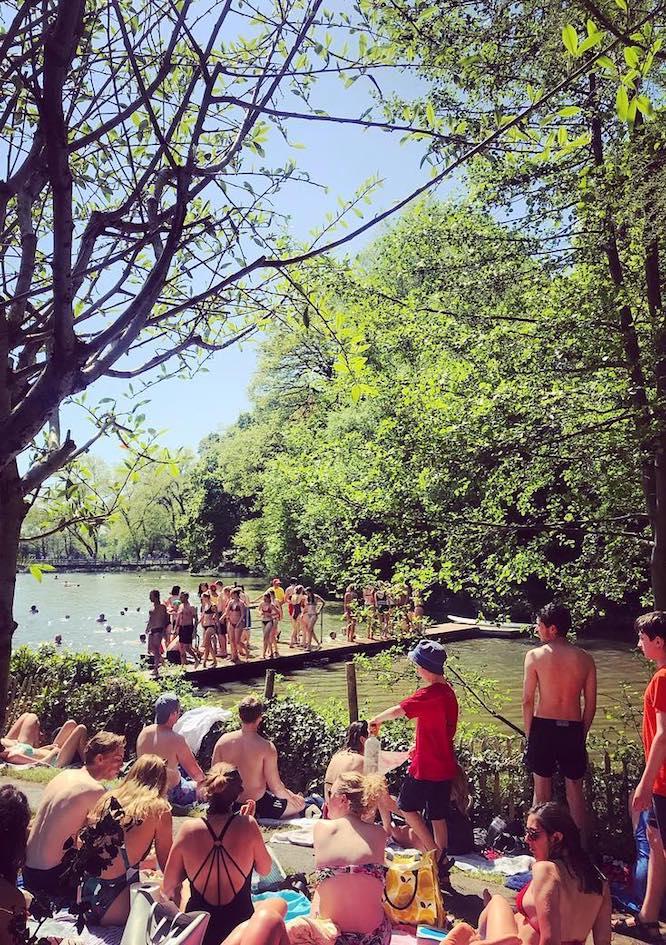 Outdoor Swimming Pool Hampstead