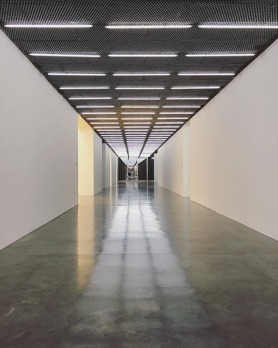 white cube art gallery