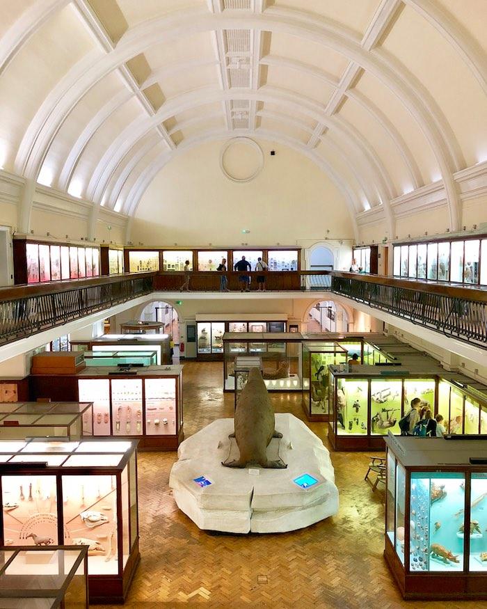 Horniman Free Museum London