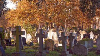 kensal cemetery leaves london