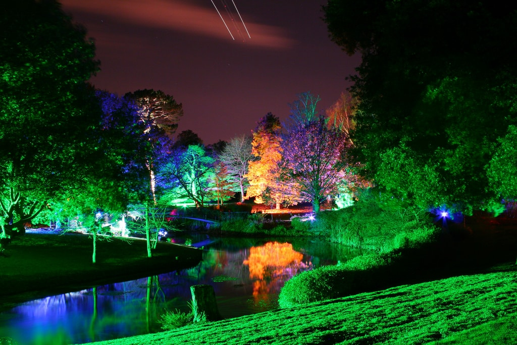syon-park-enchanted-woodland