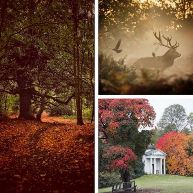 Romantic autumn date