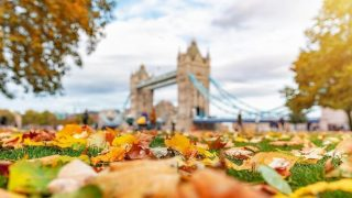 london-autumn-awesome