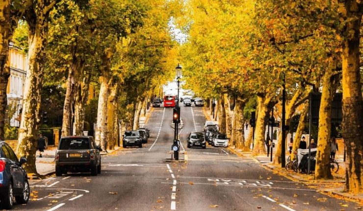 things-to-do-london-november (1)