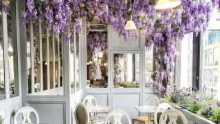 wisteria-covered-restaurant-selfridges-aubaine