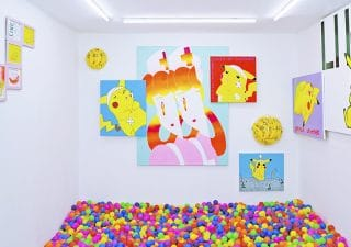 ball-pit-lungley-gallery