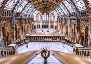 natural-history-museum-empty