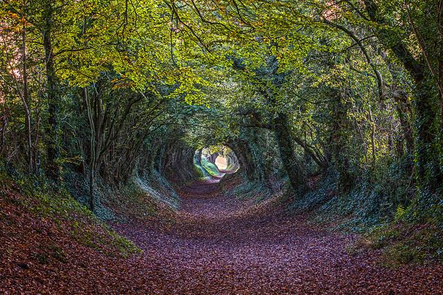 autumn-getaways