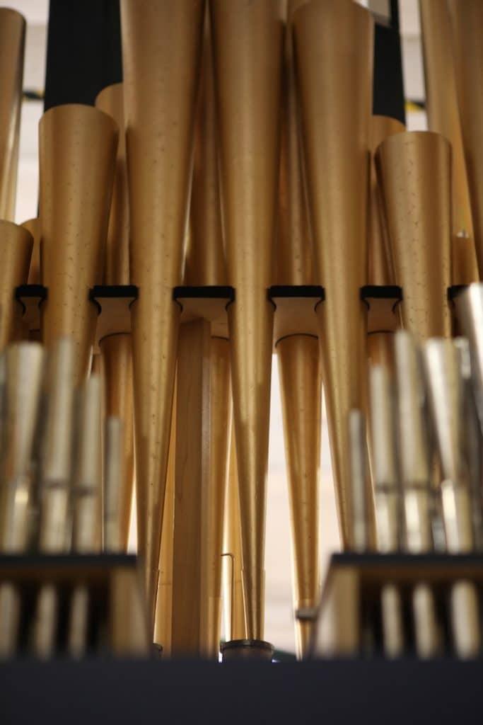 Organ Night