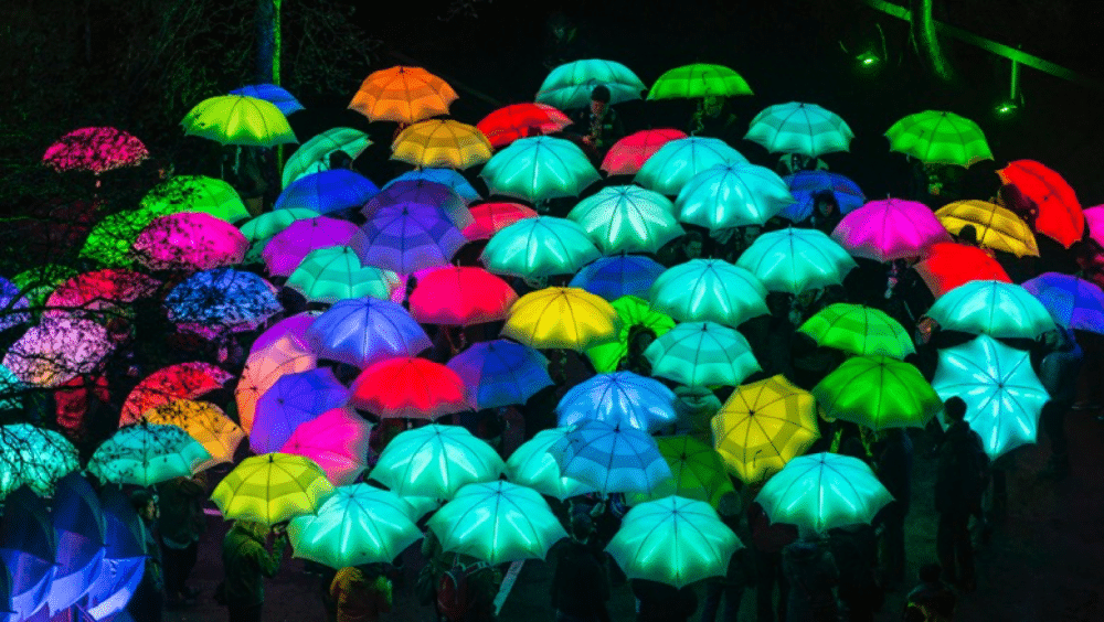 Cirque Bijou (Umbrella Project) (1)