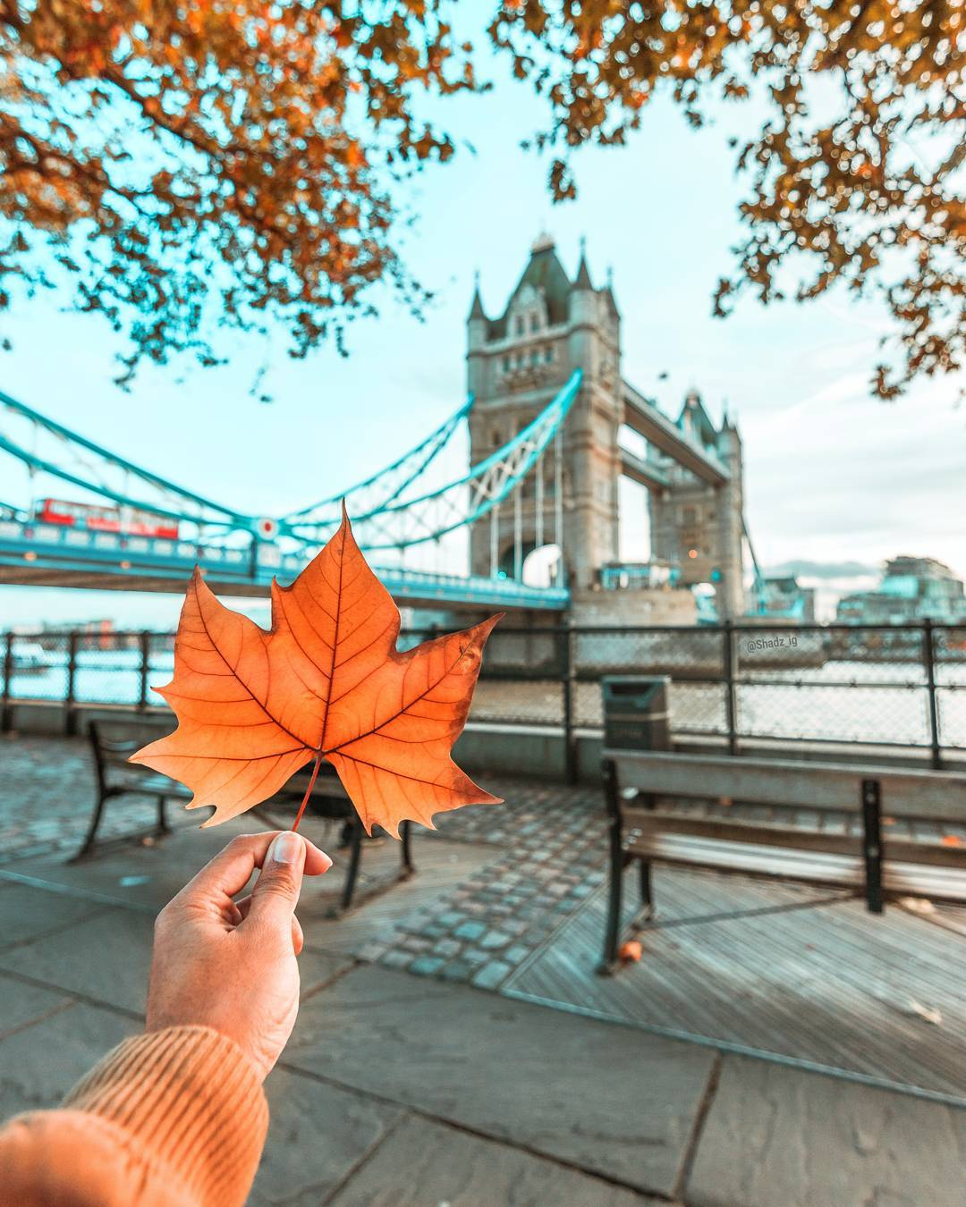 Autumn london tower bridge photo