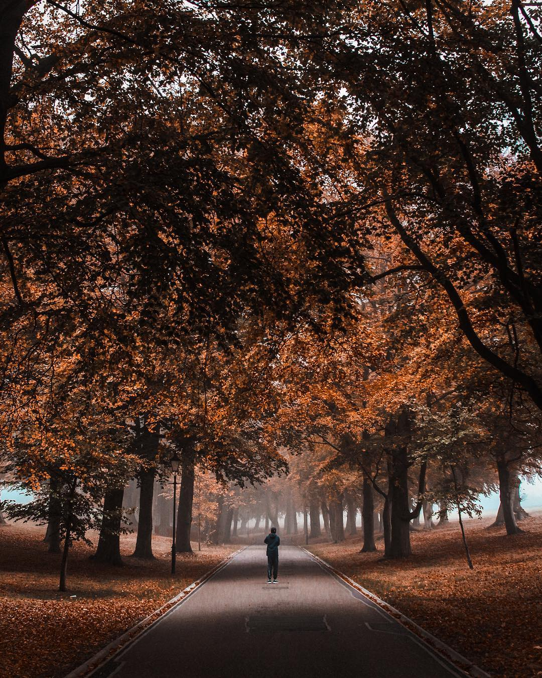 London in the autumn photos, Harpenden