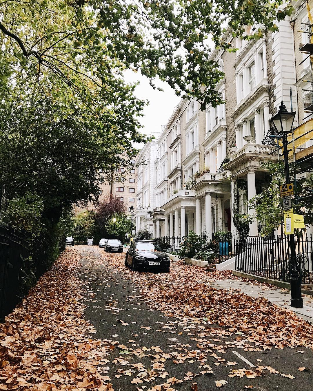 Primrose hill autumn