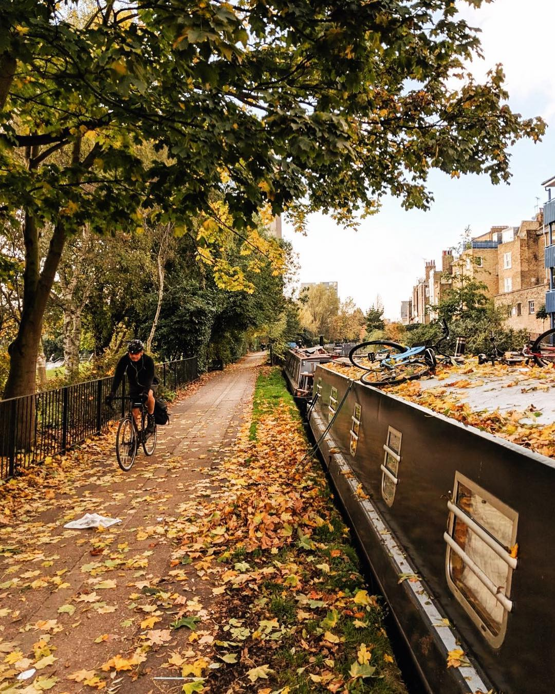 Westbourne Park in the autumn