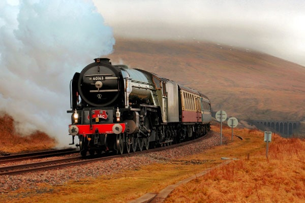 Tornado Steam Train