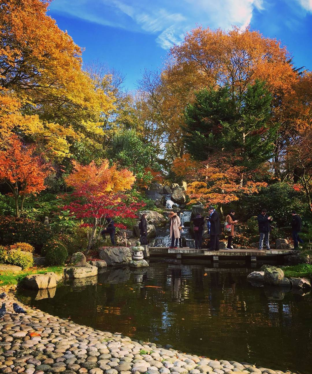 Kyoto Garden: The Tranquil Japanese Oasis Of Calm For Londoners