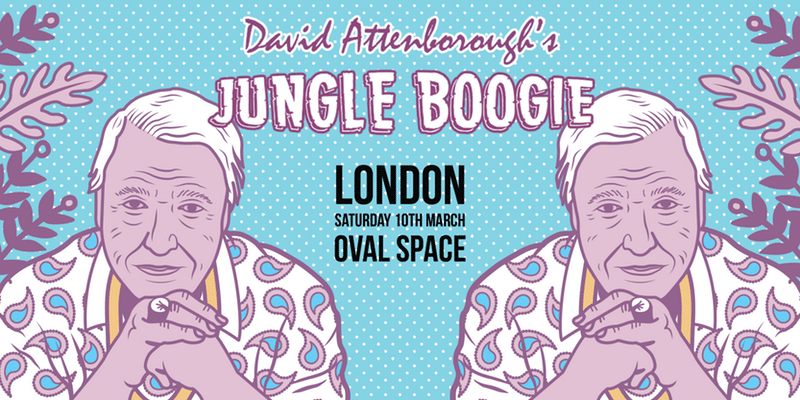 david-attenborough-jungle-boogie