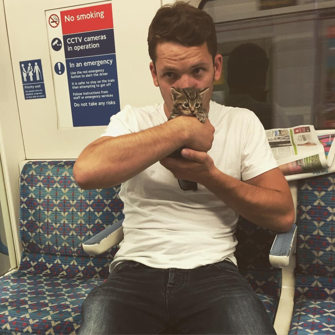 Kitten Tube London