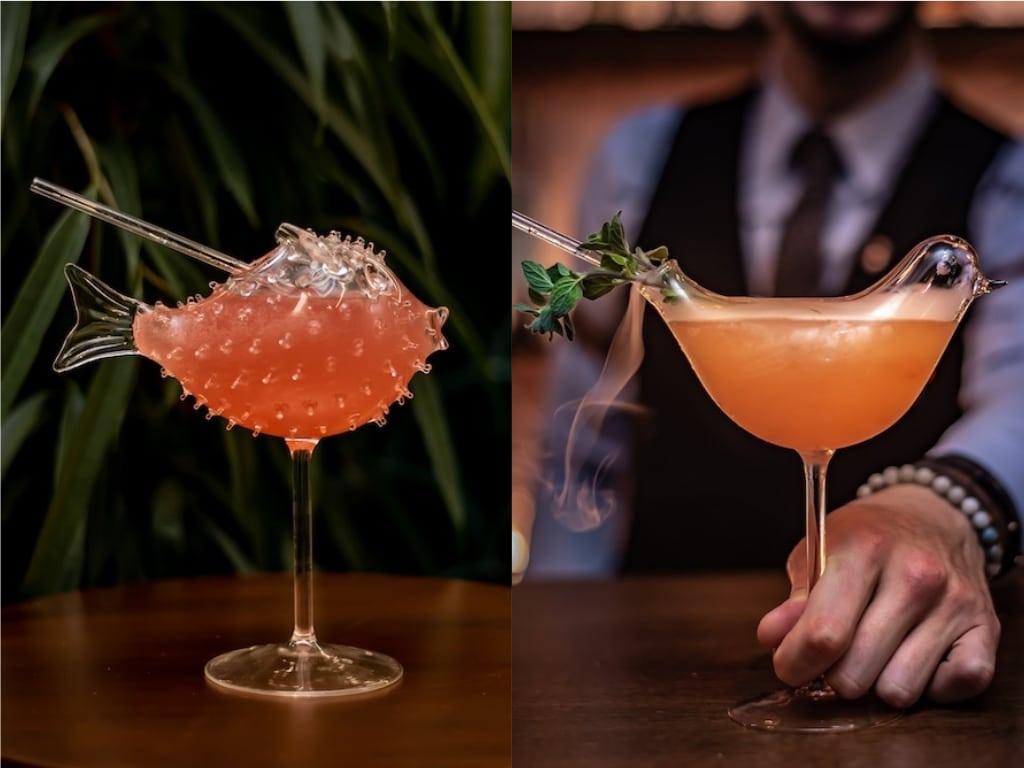 the parrot cocktails