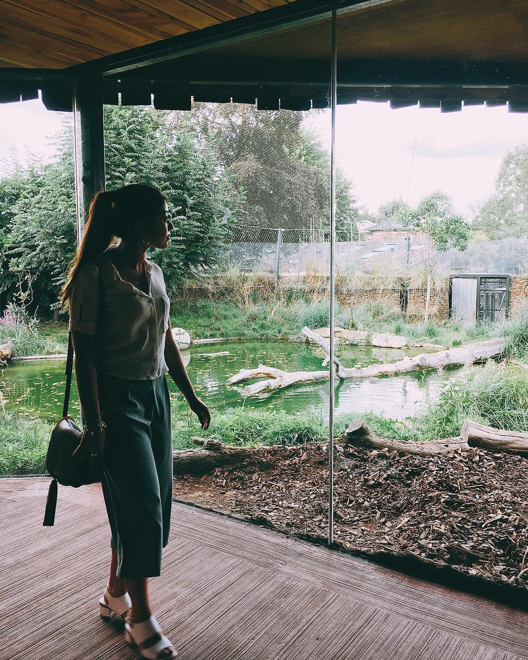 Alphabet Dating Ideas London – Z is for Zoo